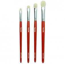 4 Eye Shadow Brush Set