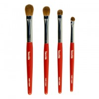 4 Eye Shadow PQ Brush Set